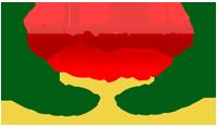TSG-Transparent-Logo-Resize