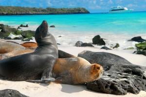 islas-galapagos