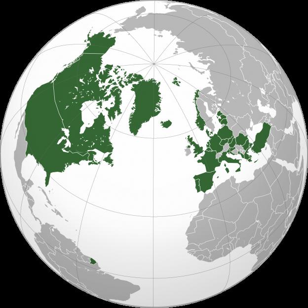 TRANSLATION SERVICES GLOBAL MARKET